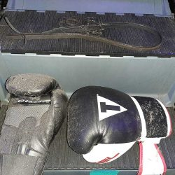Boxing gloves on stair stepper